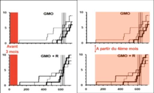 étude de Séralini sur les rats nourris au maîs OGM NK603 ( produit par Monsanto )
