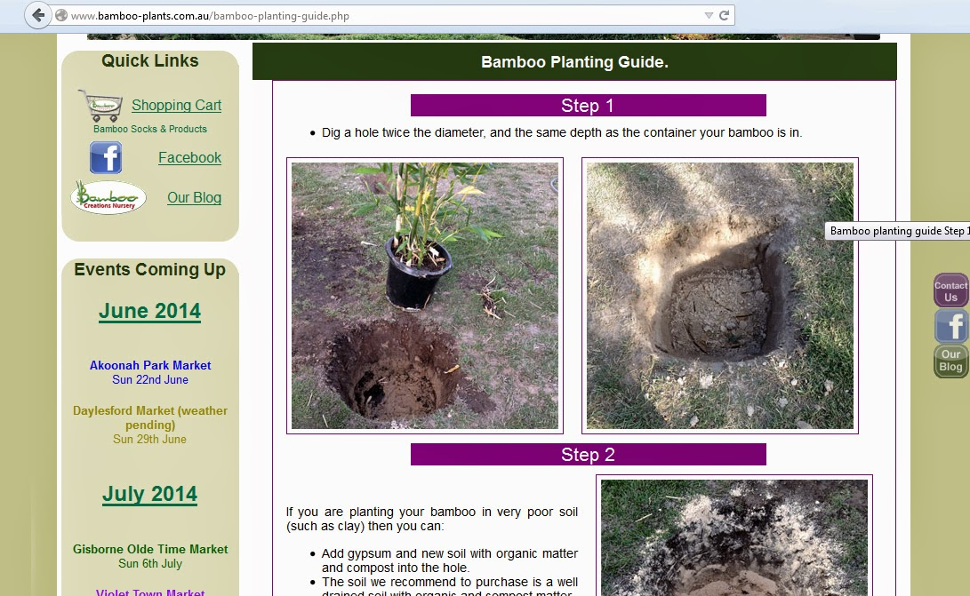 bamboo planting guide with step by step instructions.