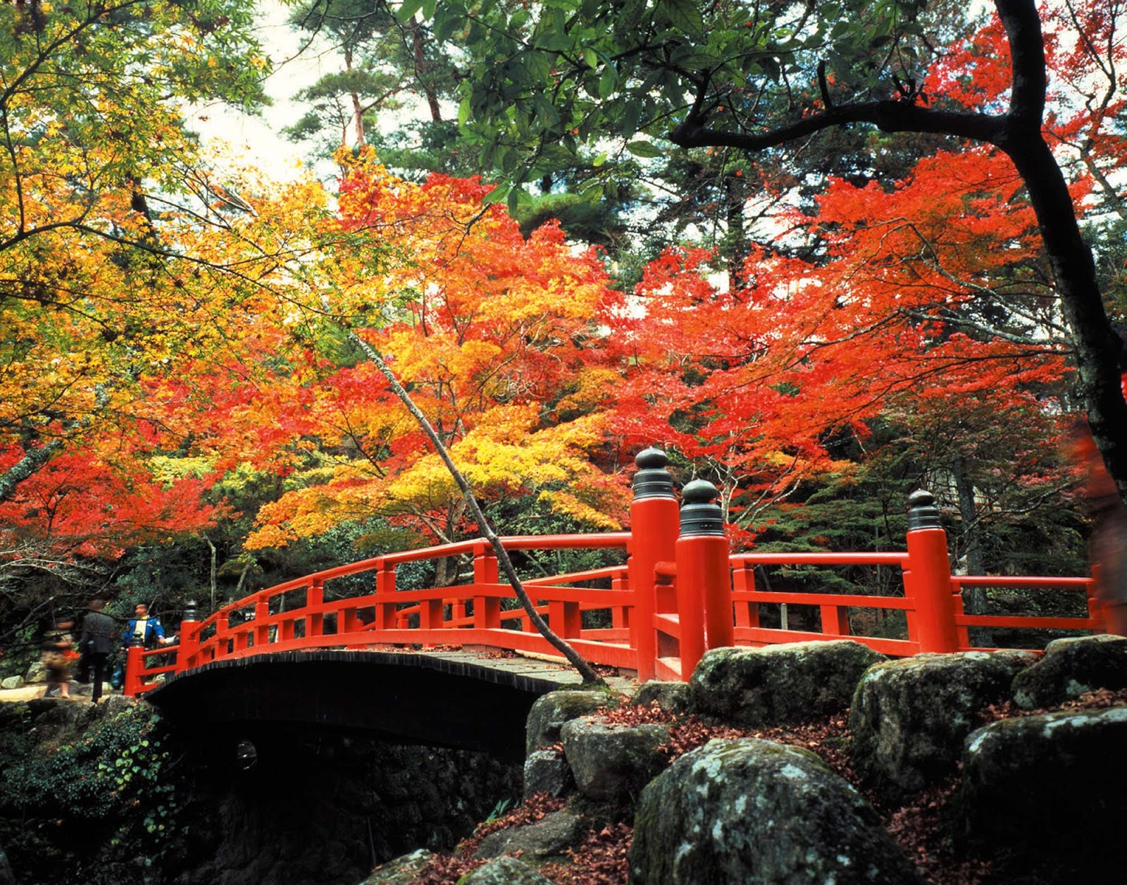 of japan bridge - photo #31
