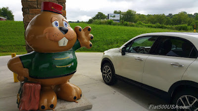 Punxsutawney Phil and Fiat 500X
