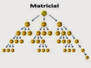 Planes de compensación matriz o matricial