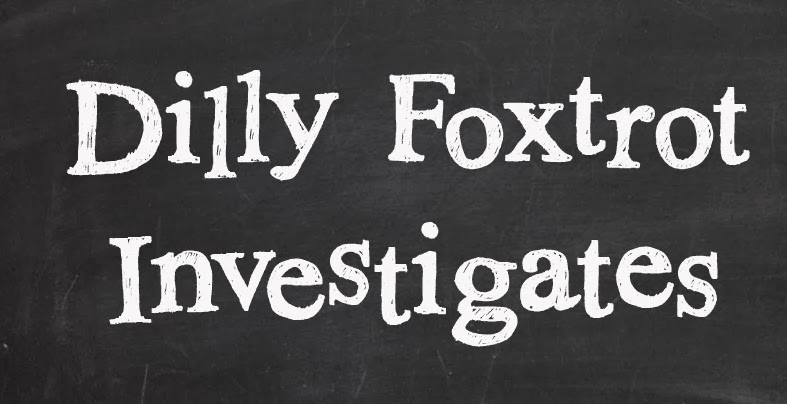 Dilly Foxtrot Investigates