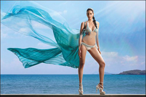 Hot Kingfisher Calendar 2012