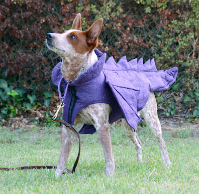 felt handmade dog dragon outfit