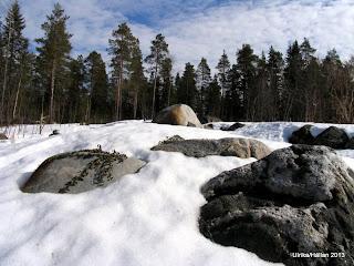 Alpinparti