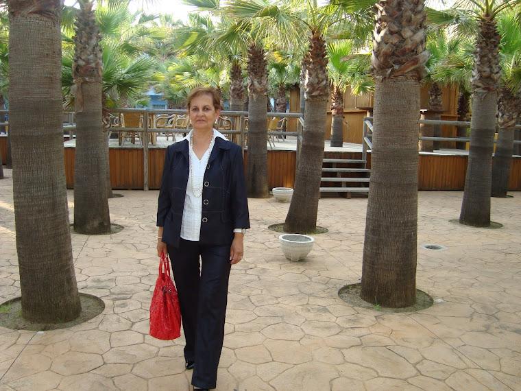 HOTEL PLAYABALLENA ( ROTA )