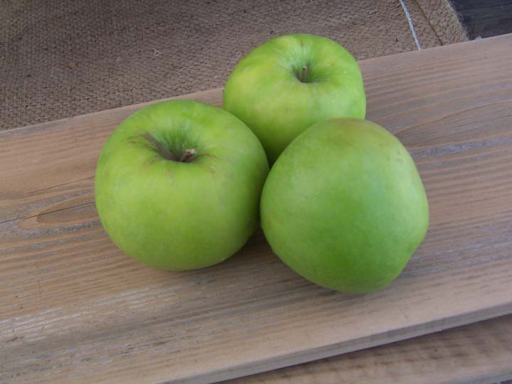 Got Apple Cores and Peels? Make jelly! – 11/6/11