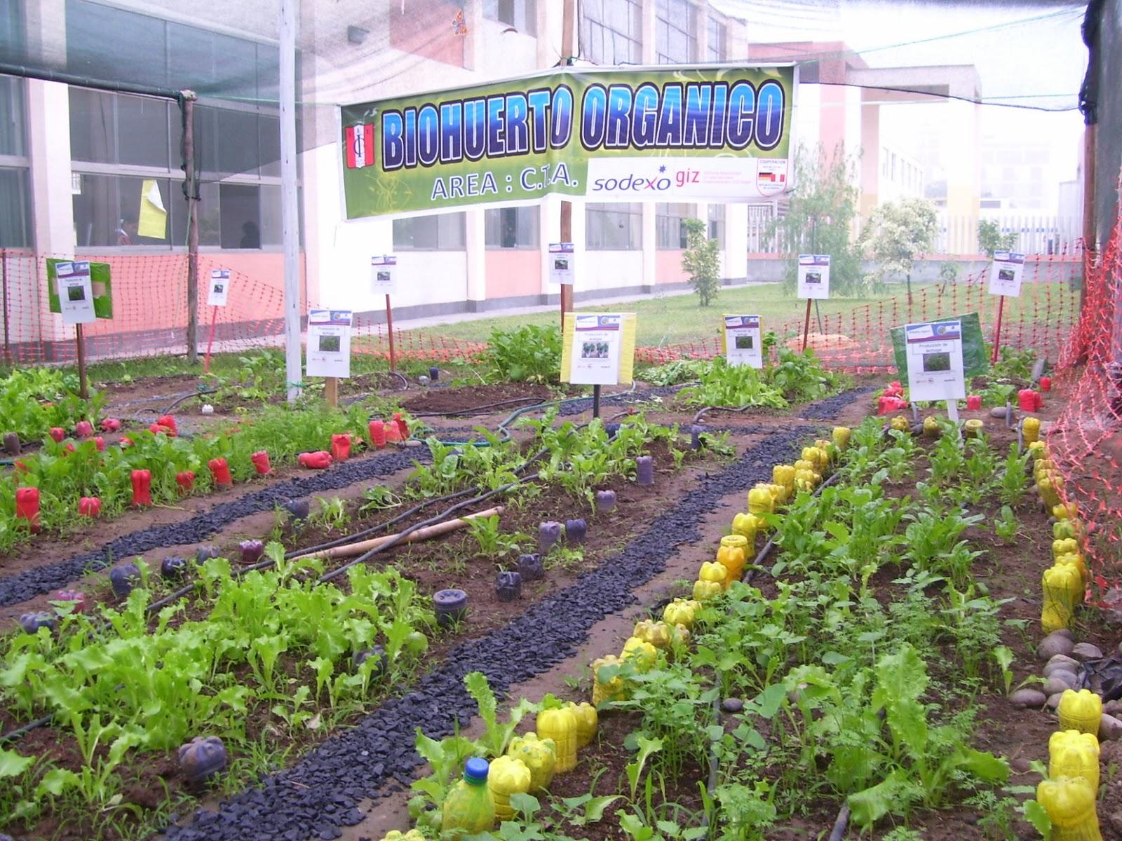 I e emblematica isabel la catolica mayo 2013 for Proyecto cafeteria escolar