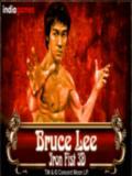 3d-Bruce-Lee-Iron-Fist