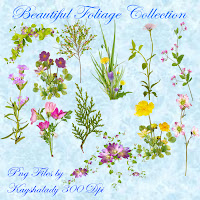 Beautiful Foliage Collection PNG