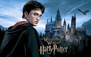 Biaya Sekolah Hogwarts, Biaya Harry Potter Sekolah