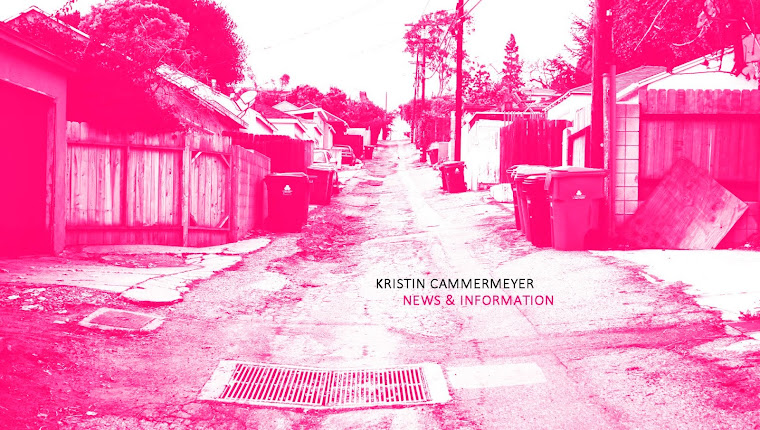 KRISTIN CAMMERMEYER > NEWS & INFORMATION