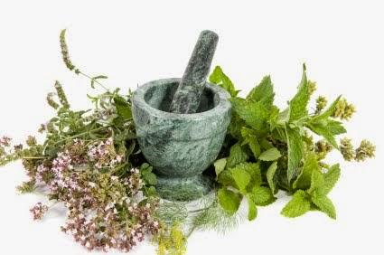 ZIOŁOSFERA u herbiness