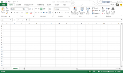 Microsoft Office 2013, Professional