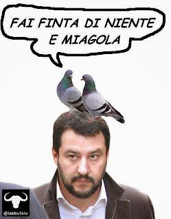salvini, facebook, satira
