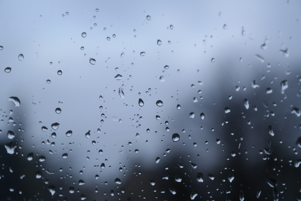 Raindrops on a window pane