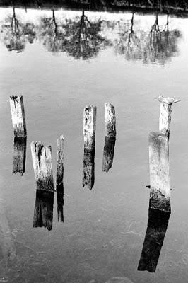At Black Brook, 1987 © Graham Dew