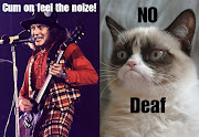 Grumpy cat meets Slade. Grumpy cat meets Slade