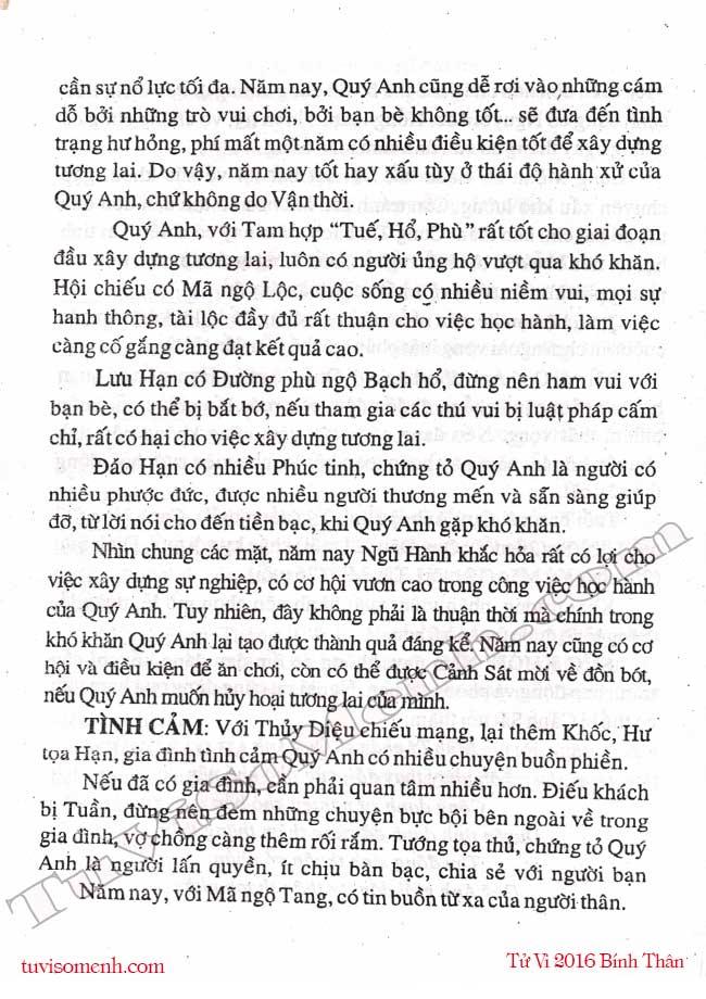 Binh Ty 2016 nam mang