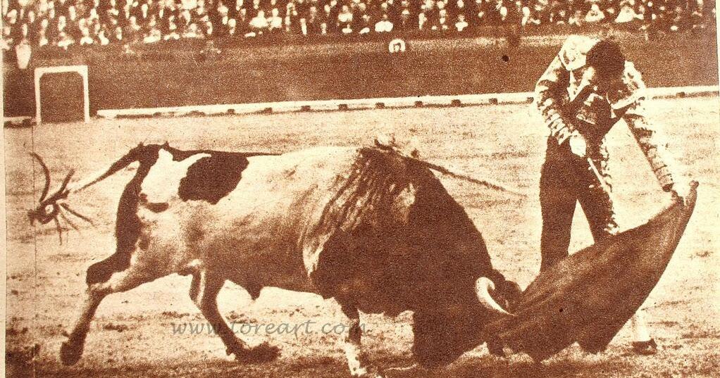 Dos toros de Barcial
