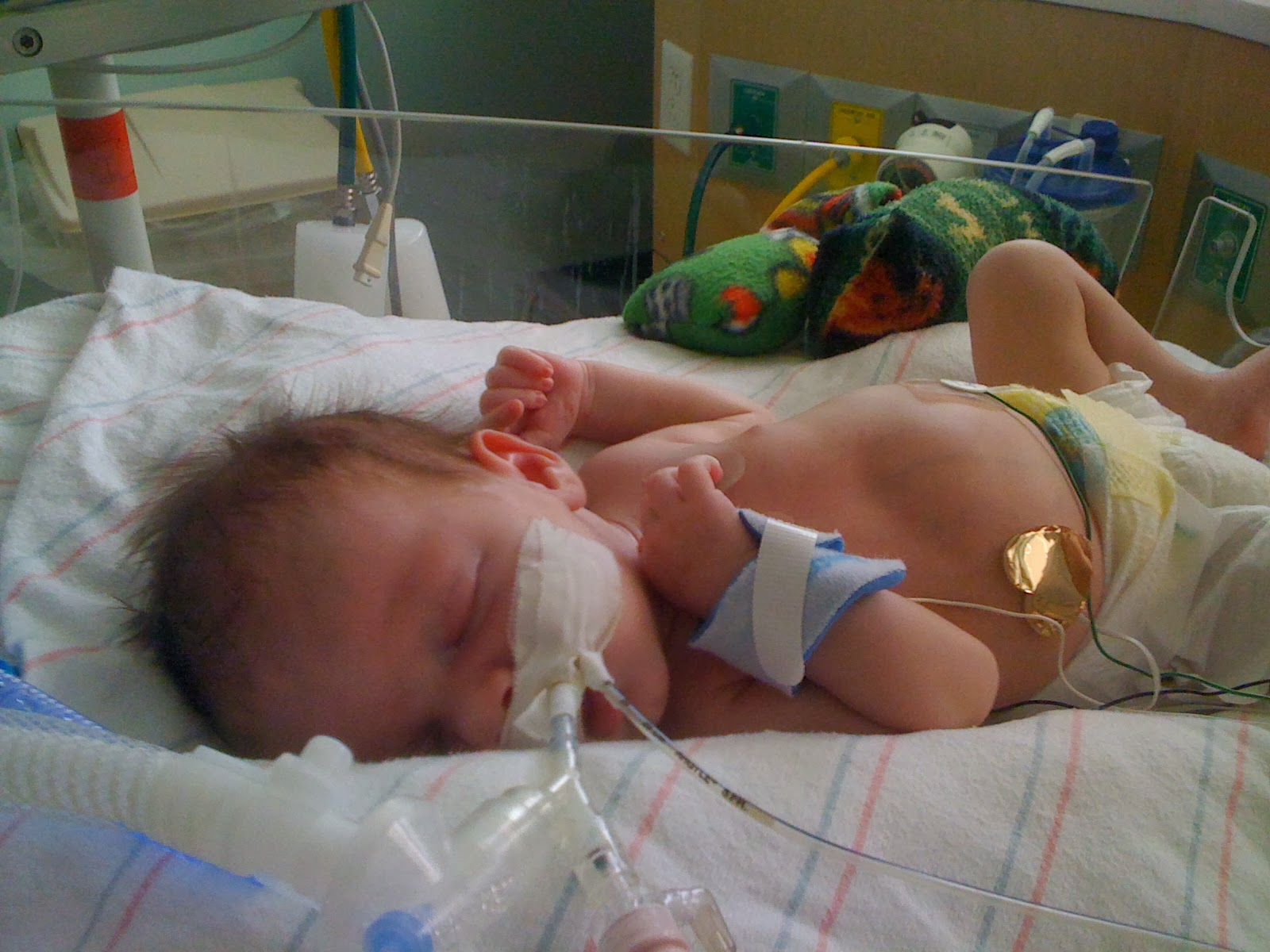 Neonatal Nurse Practitioner Working On A Baby