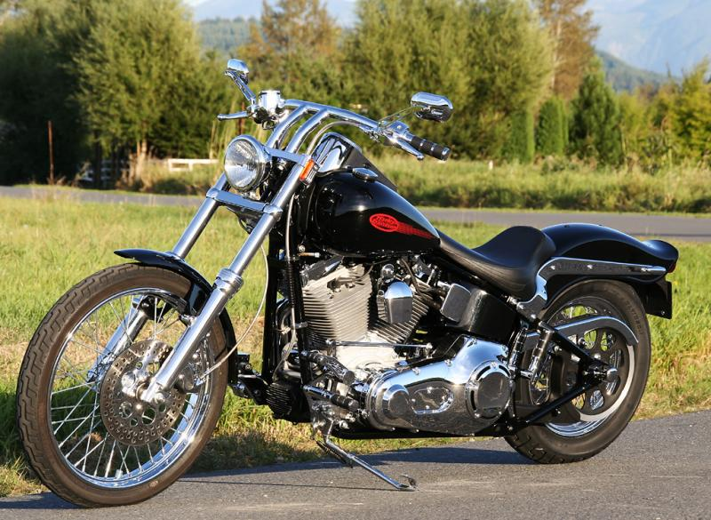 Images for harley davidson fxst softail