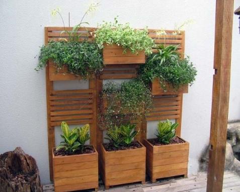 jardim vertical hortalicas : Coisas de Mulher: Dicas para jardim vertical