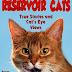 Reservoir Cats - Free Kindle Fiction