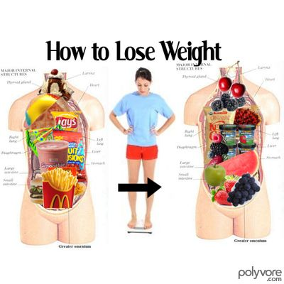 Food Diet Plan To Lose Weight : Fastest Weight Loss Techniques   Skinny Asian Secrets That Work