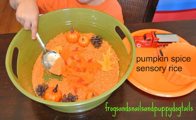 Pumpkin Spice Rice Fall Sensory Bin- fun hands on play