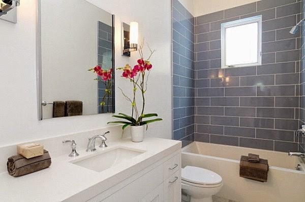 Plante decorative pentru baie