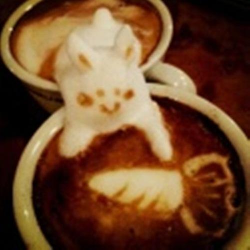 cafe trung nguyen,  cafe trầm,  cafe hd,  cafe giam can,  ghien cafe,  gia cafe,  cafe miet vuon,  cafe đắng và mưa