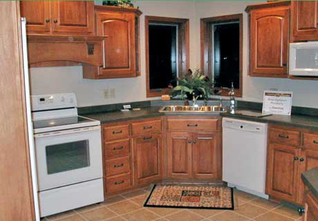 Corner kitchen cabinet designs an interior design for Small kitchen designs with corner sinks