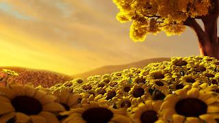 15 tane yeni çok güzelhd çiçek doğa manzara resmi yüksek