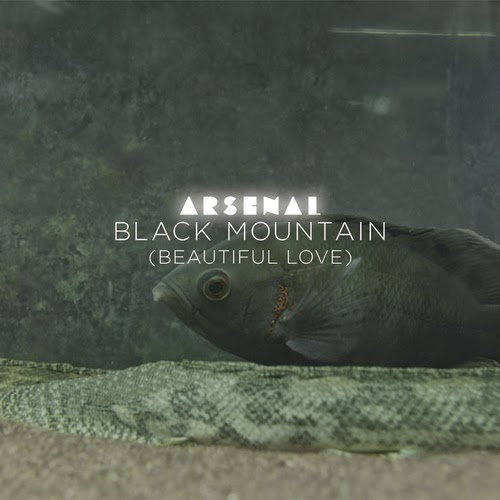 Arsenal - Black Mountain (Beautiful Love) (ATTAR! Remix)