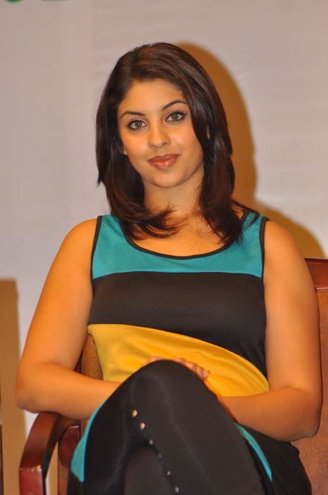 richa gangopadhyay at discount card launch actress pics