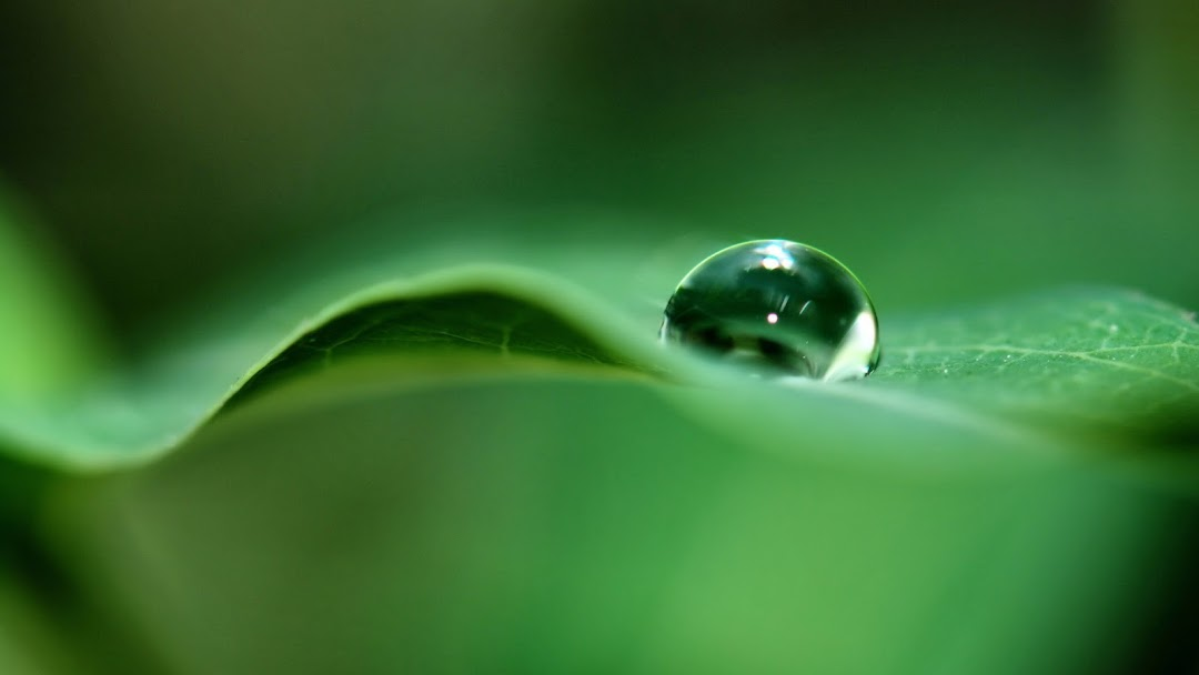 Water Drops HD Wallpaper 4