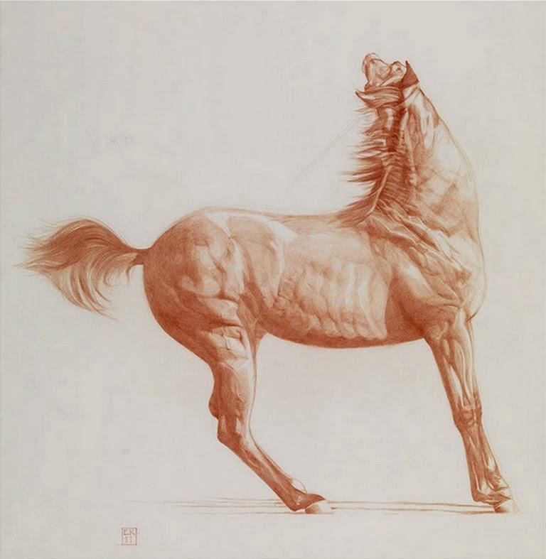 dibujos-de-caballos-en-sanguina