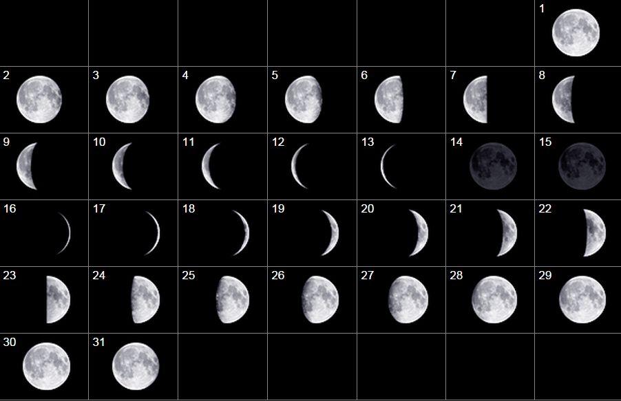 ASTRONOMIA: El Cielo de Agosto