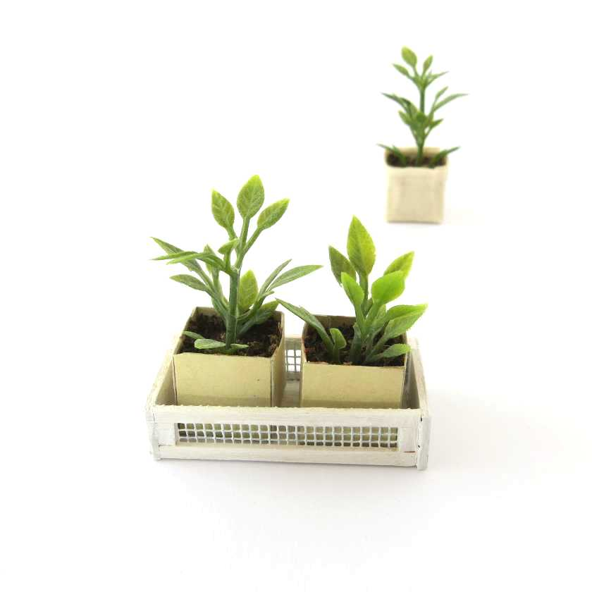 Two plants in a white crate for dollhouse