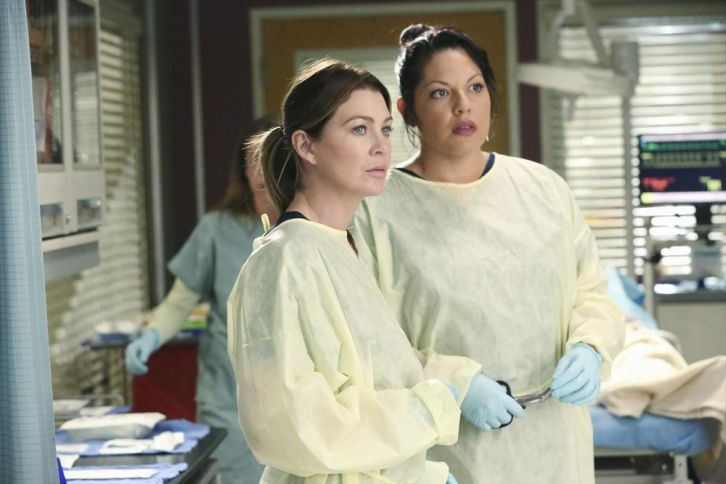 POLL : Favorite Scene from Grey's Anatomy - Can We Start Again, Please?