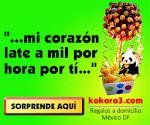 Nuestro patrocinador: Kokoro3.com Regalos a domicilio D.F.