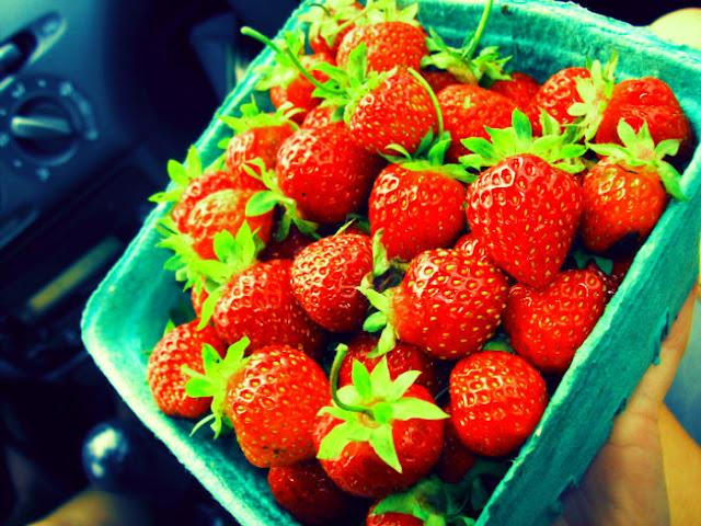 Strawberries in P.E.I.
