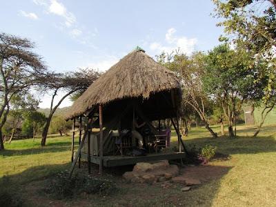 camping masai mara, Kenya, Serengueti