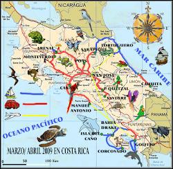 Pajareando por Costa Rica