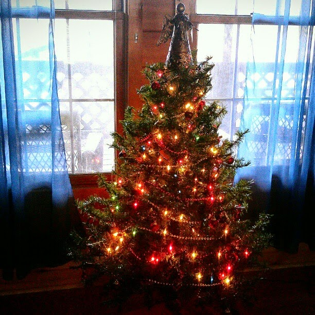 Massive 3 Foot Christmas Tree is Up!