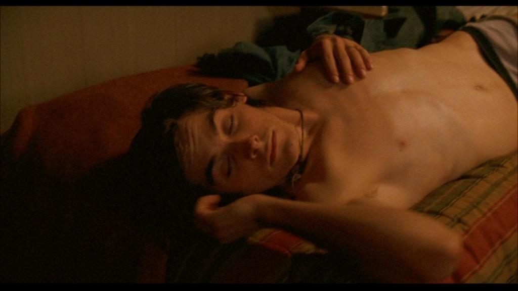 Kevin zegers transamerica nude