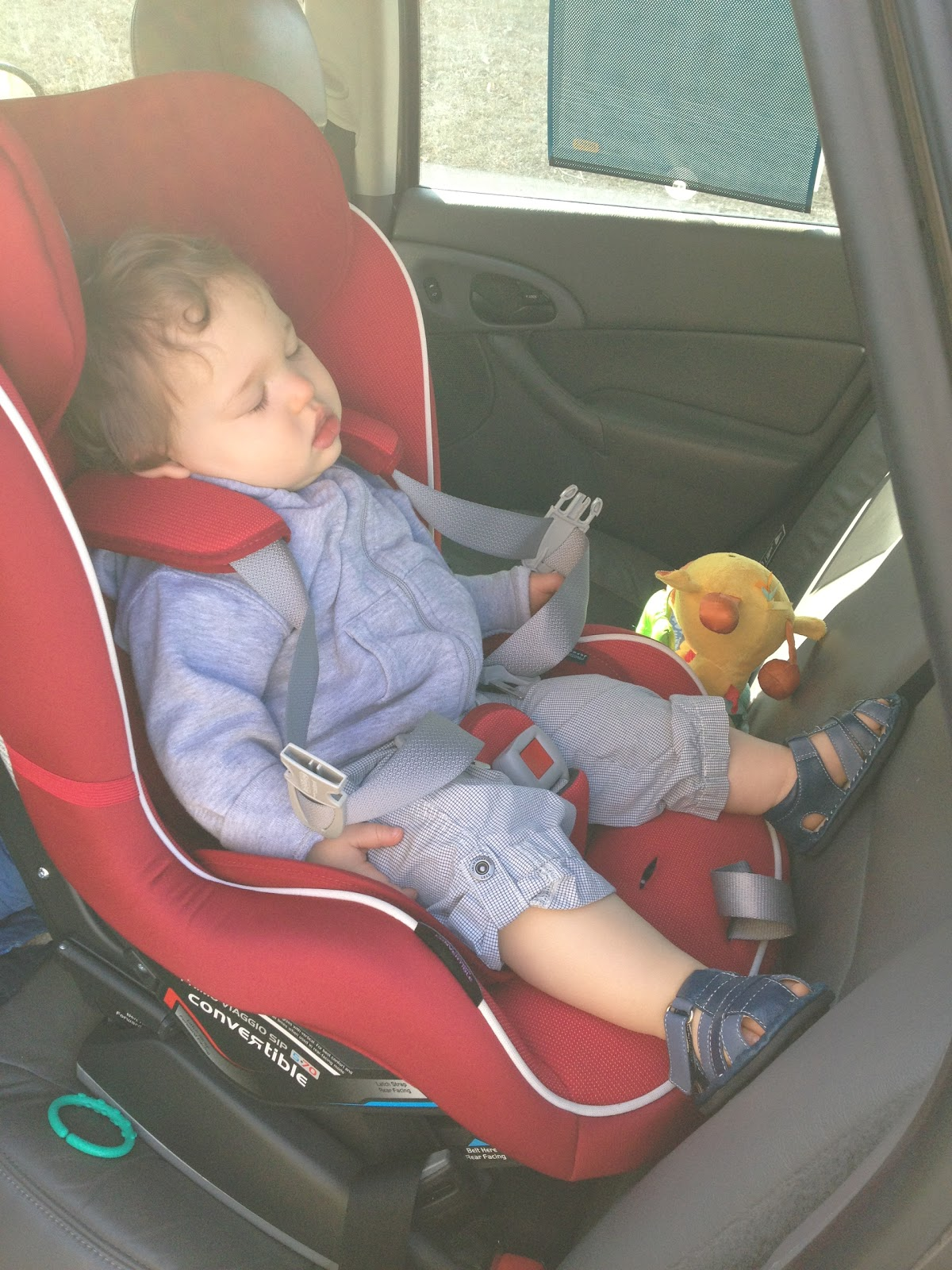 Peg Perego Convertible Car Seat vs. Maxi Cosi Priori | baby stripes