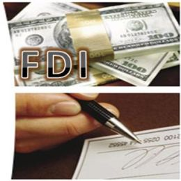 FIPB Clears 20 FDI Proposals Worth Rs 1,034.37 Crore
