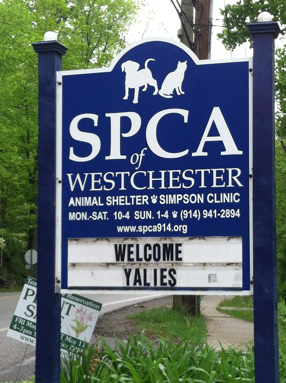 westchester dis Westchester school district 925 serves the city there are four schools in this district: westchester primary school (k–2) westchester intermediate school (3–5).